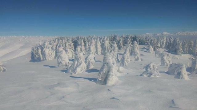 Kar Her Tarafı Beyaza Bürüdü